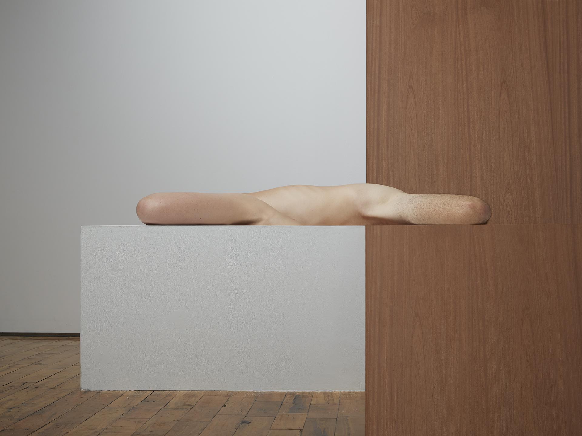 Segmented Bodies with Pedestal  2014
