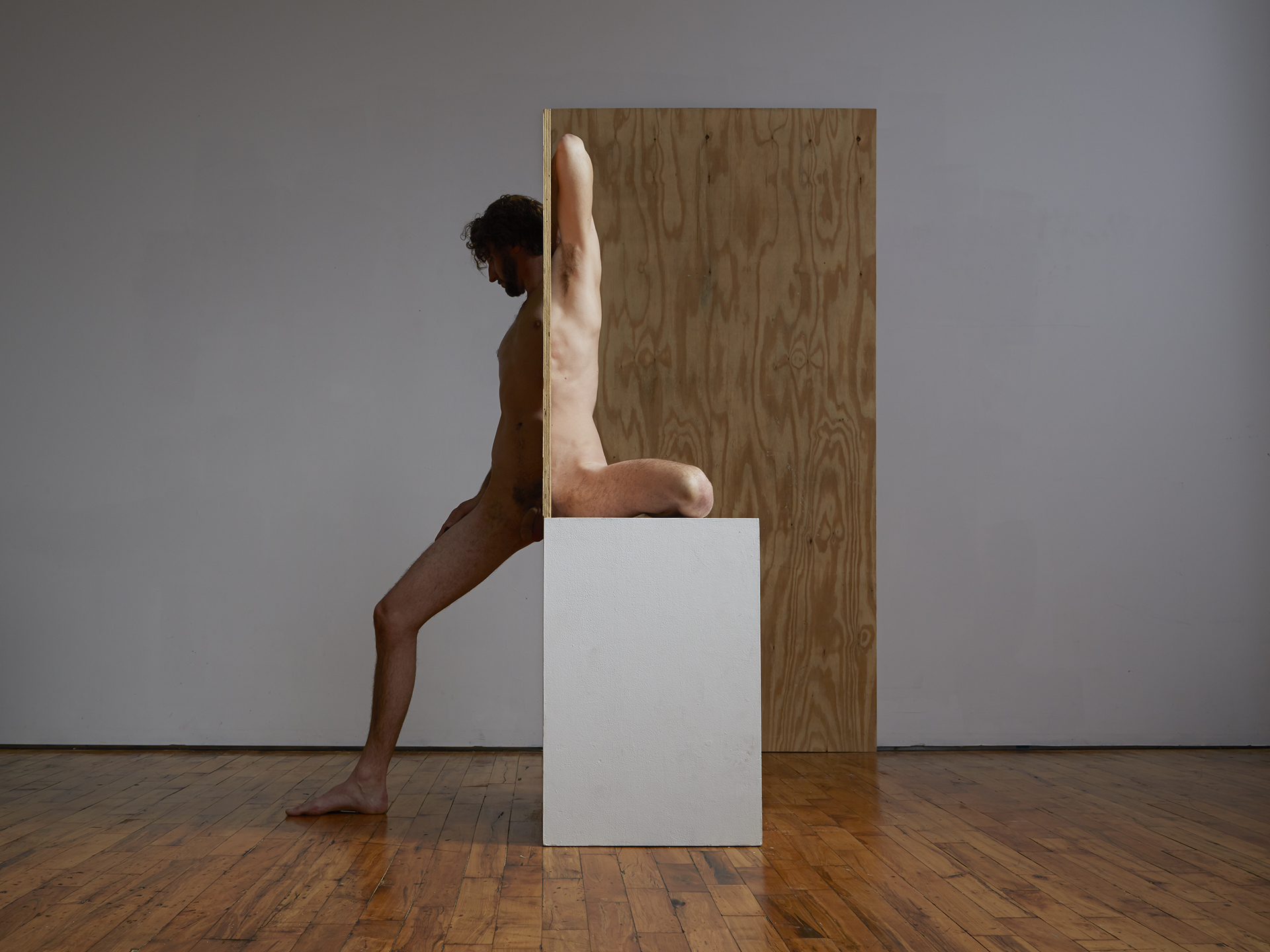 Segmented Body with Plywood and Pedestal (Self Portrait)  2014