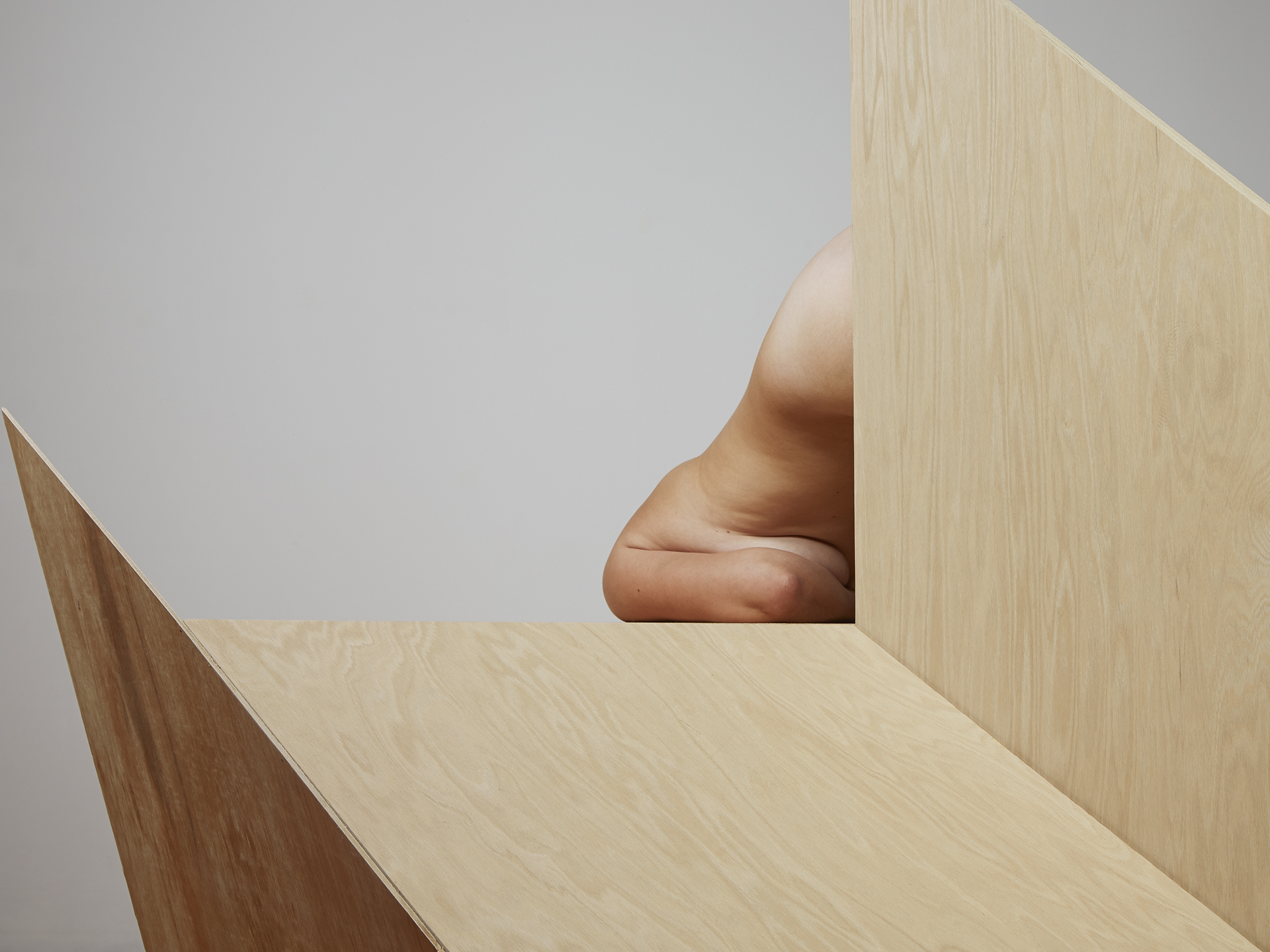Segmented Body with Plywood Angles  2014