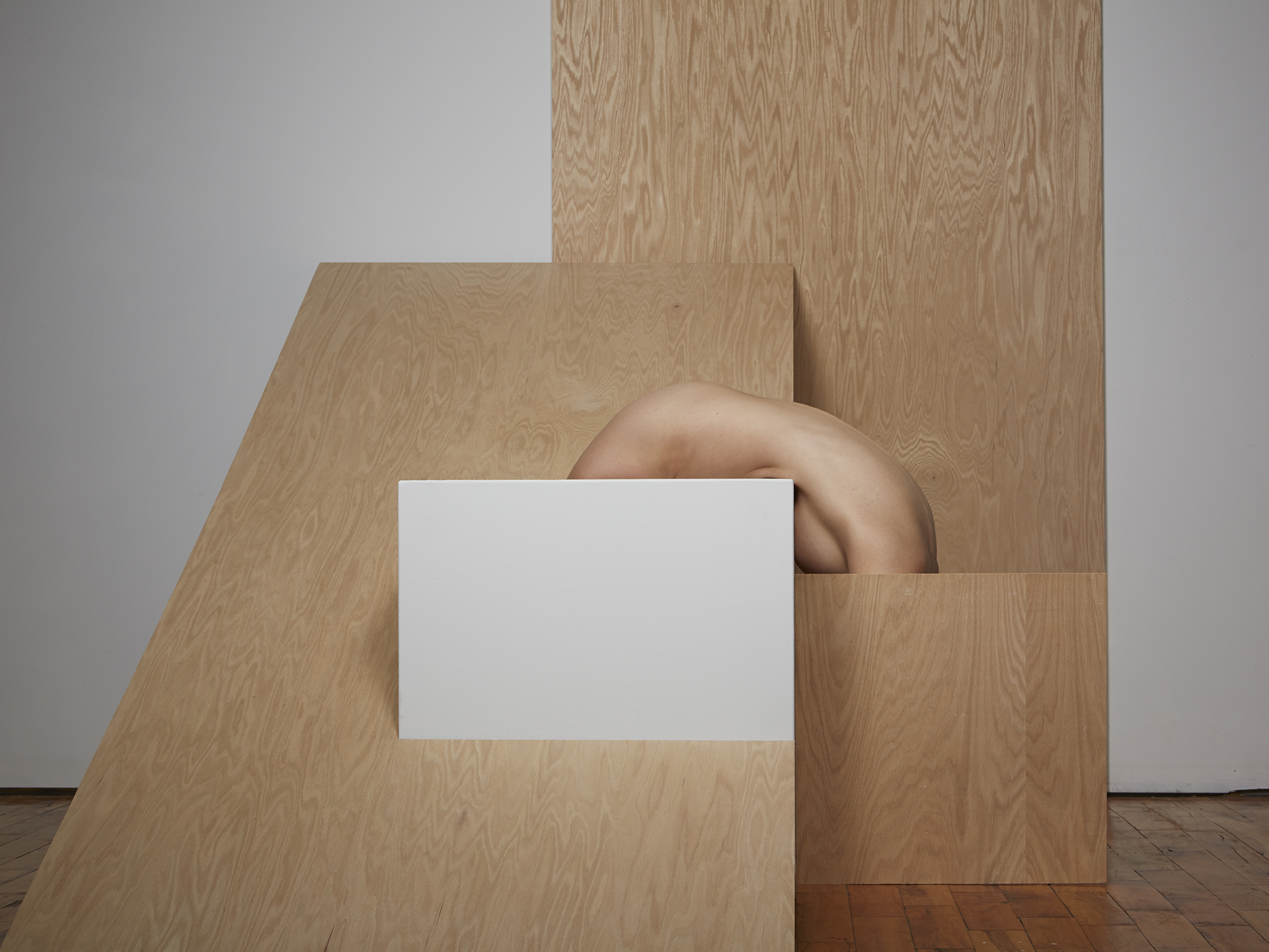 Segmented Body with Plywood and Pedestal  2014