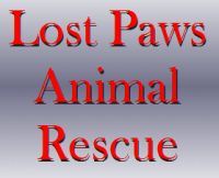 Lost Paws  PO Box 128 Pittstown, NJ 08867 908-331-1550      http://www.lostpawsanimalrescue.org/