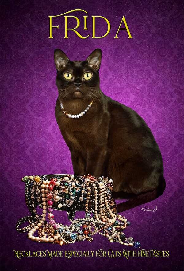 Diana Wilder  FRIDA – Necklaces for Cats with Fine Tastes   Dianawilder1@gmail.com