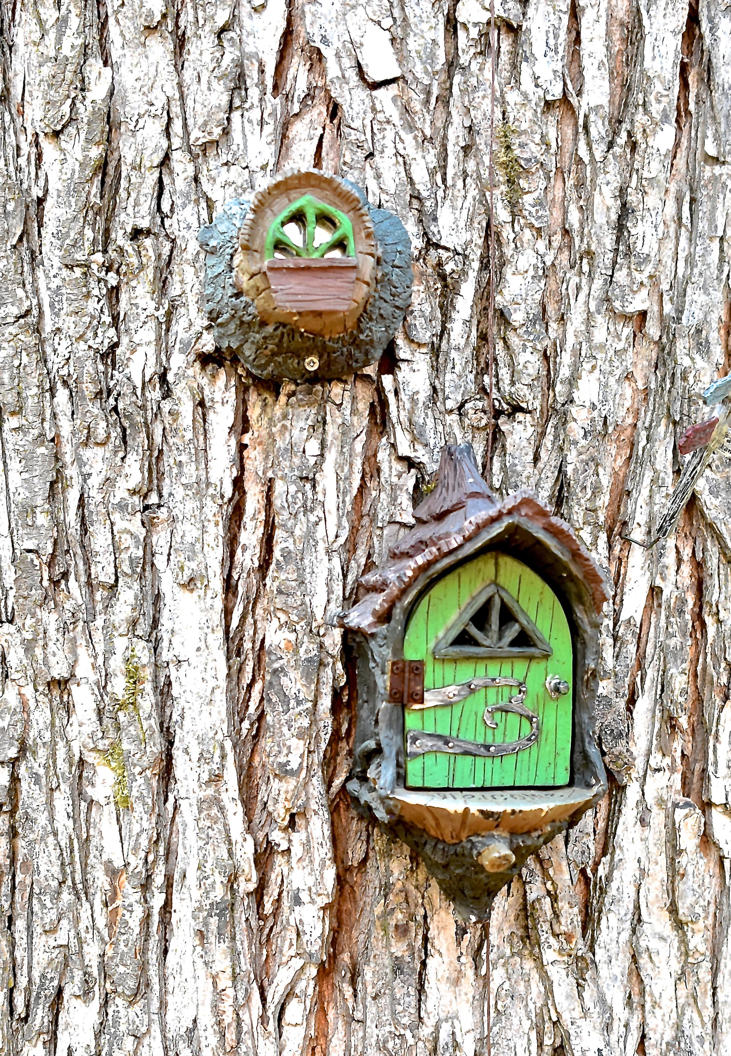 Fairies 7 Bob Tuomi.jpg