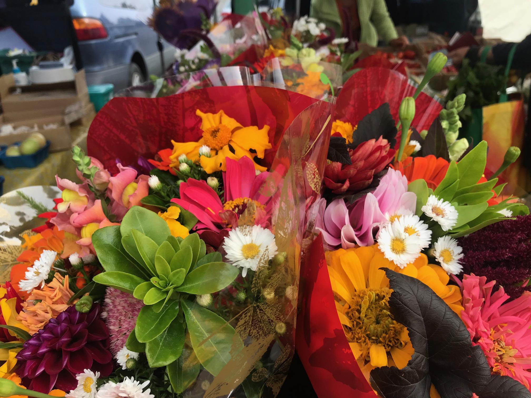 Market 10 Kate King.jpg