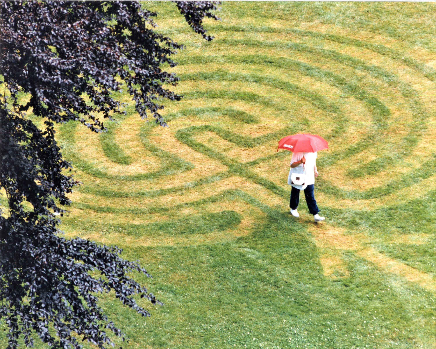 The labyrinth that Terry Loeppky and his father mowed onto the lawn of Irving Park, perhaps in 1997. Note the arrow at the entrance and the curving cross of conventional classical/Cretan labyrinths. (Bruce Stotesbury of the Times Colonist, probable photographer)