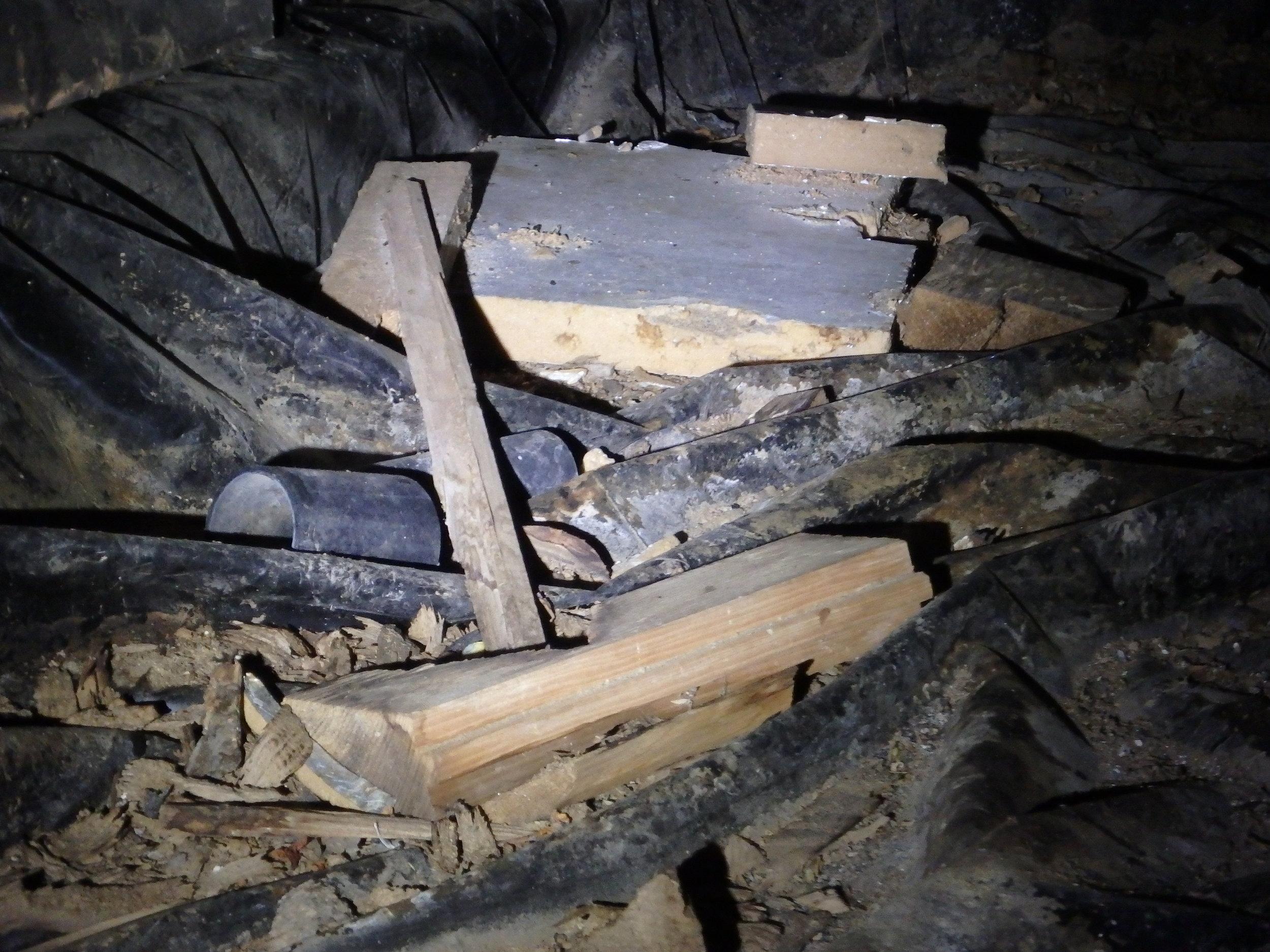 Wood Debris.JPG