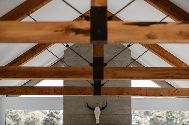If these trusses could speak! Cut down on the family farm, milled in an old school northland sawmill and then handmade by the talented builders on site! The smell of Macrocarpa still gets us daily 🙌 *water buffalo skull not from family farm 😜