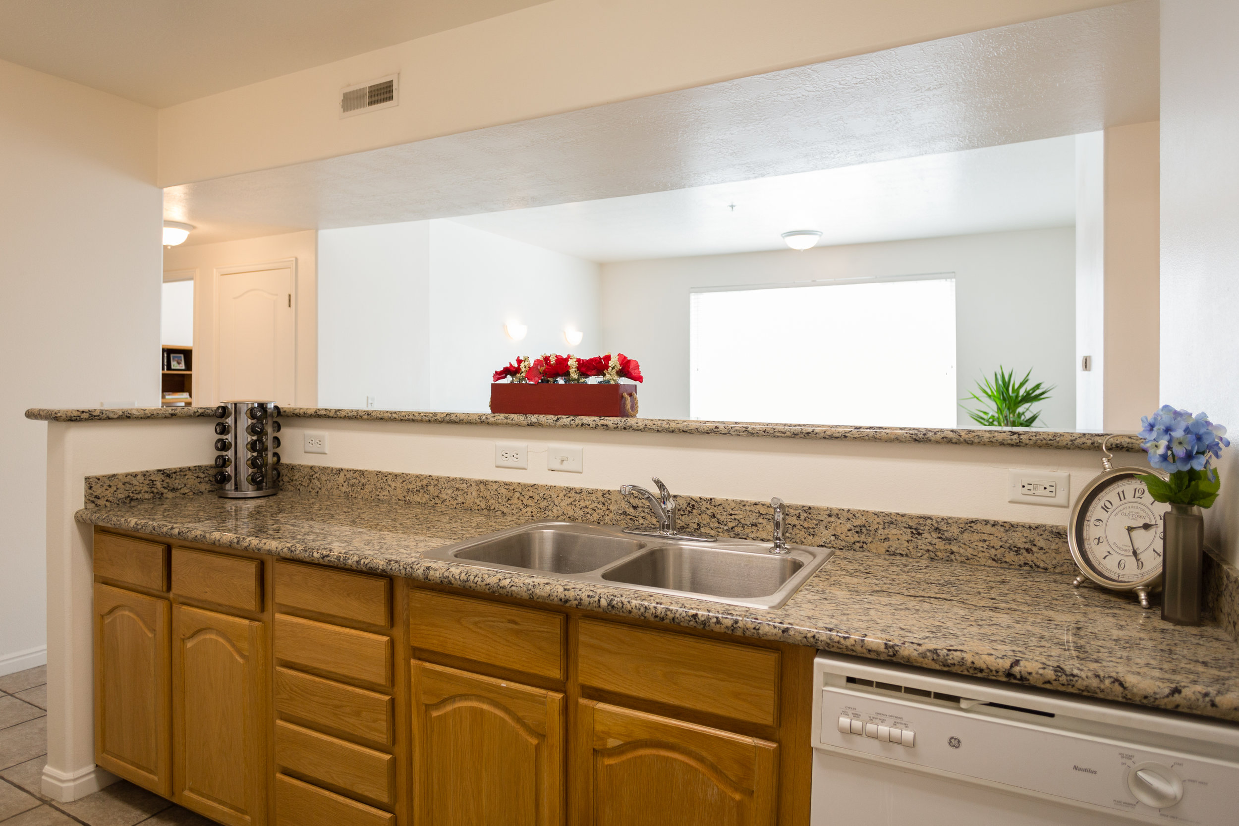 07-22-15 - Kitchen Sink and Countertop.jpg