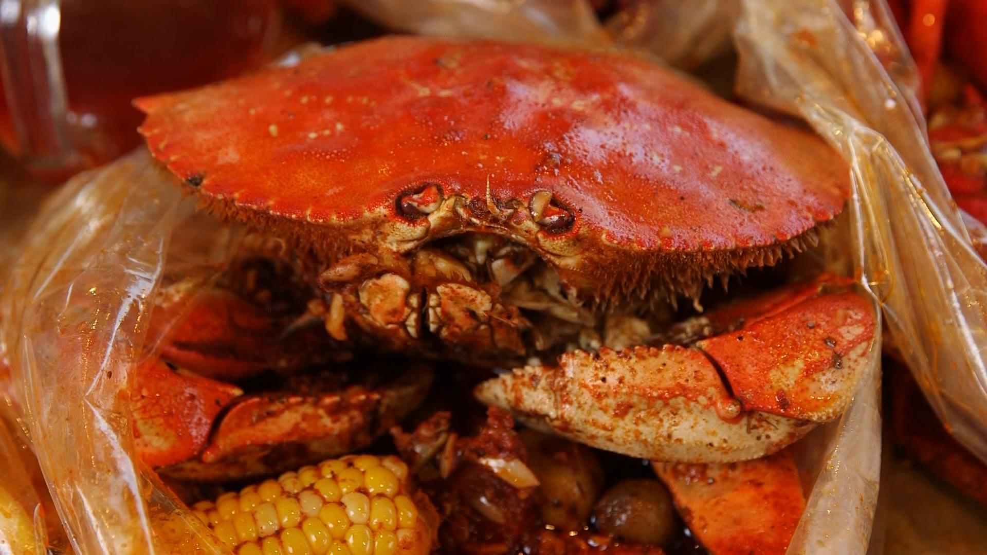 shaking crab dungeoness.jpg