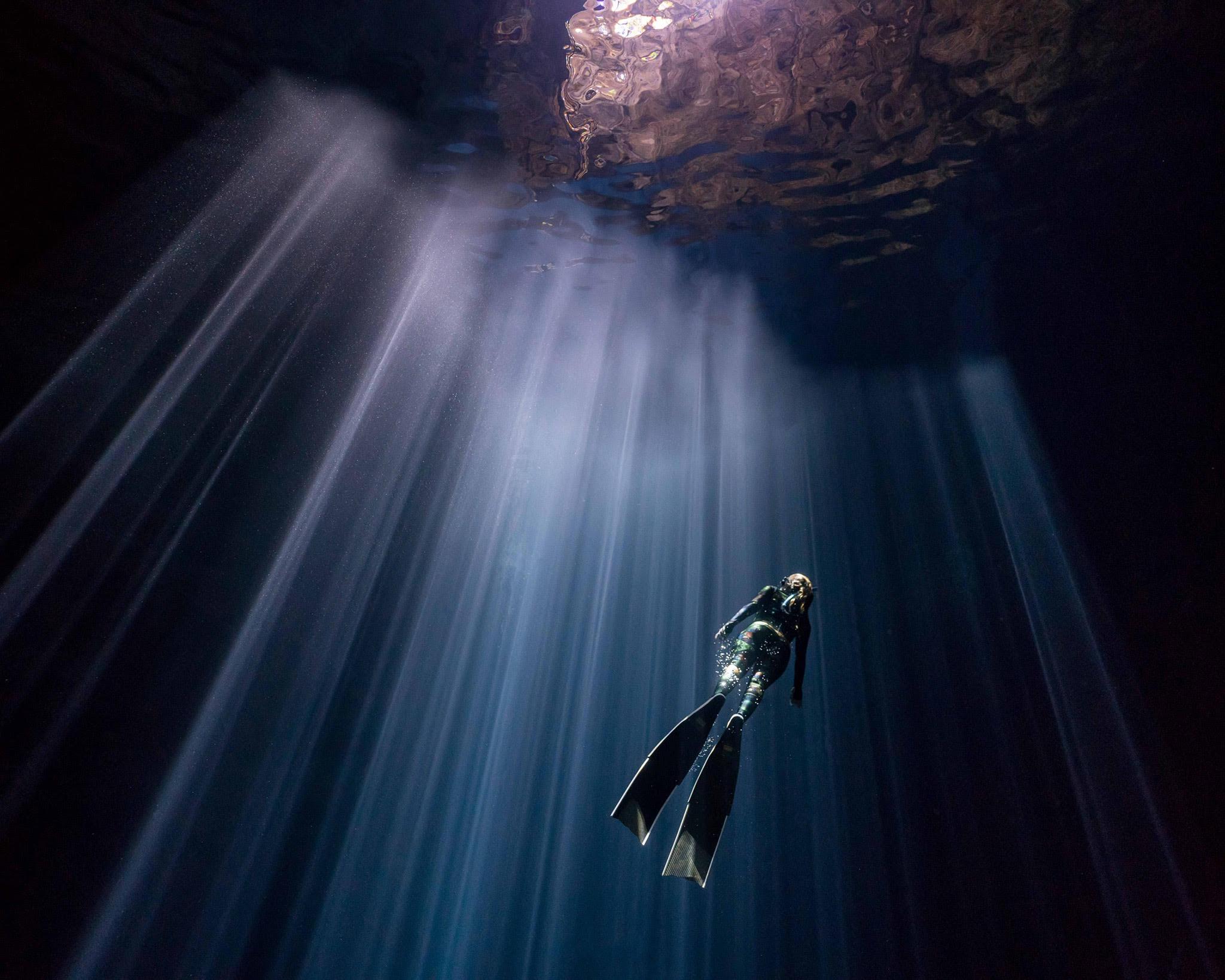 freediving_sharks_underwater_photography.jpeg