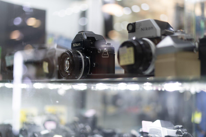 Sony A9 + Sony FE 50mm f/1.8 (f/1.8, 1/100sec, ISO125)