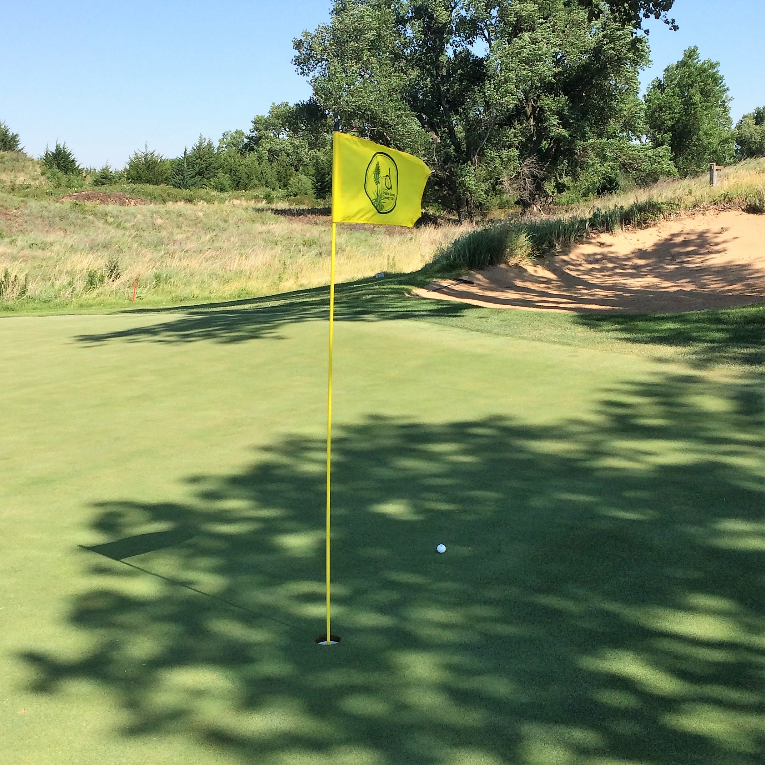 My pitch shot after finding my approach shot to the 11th hole, in the rough at the back of the green