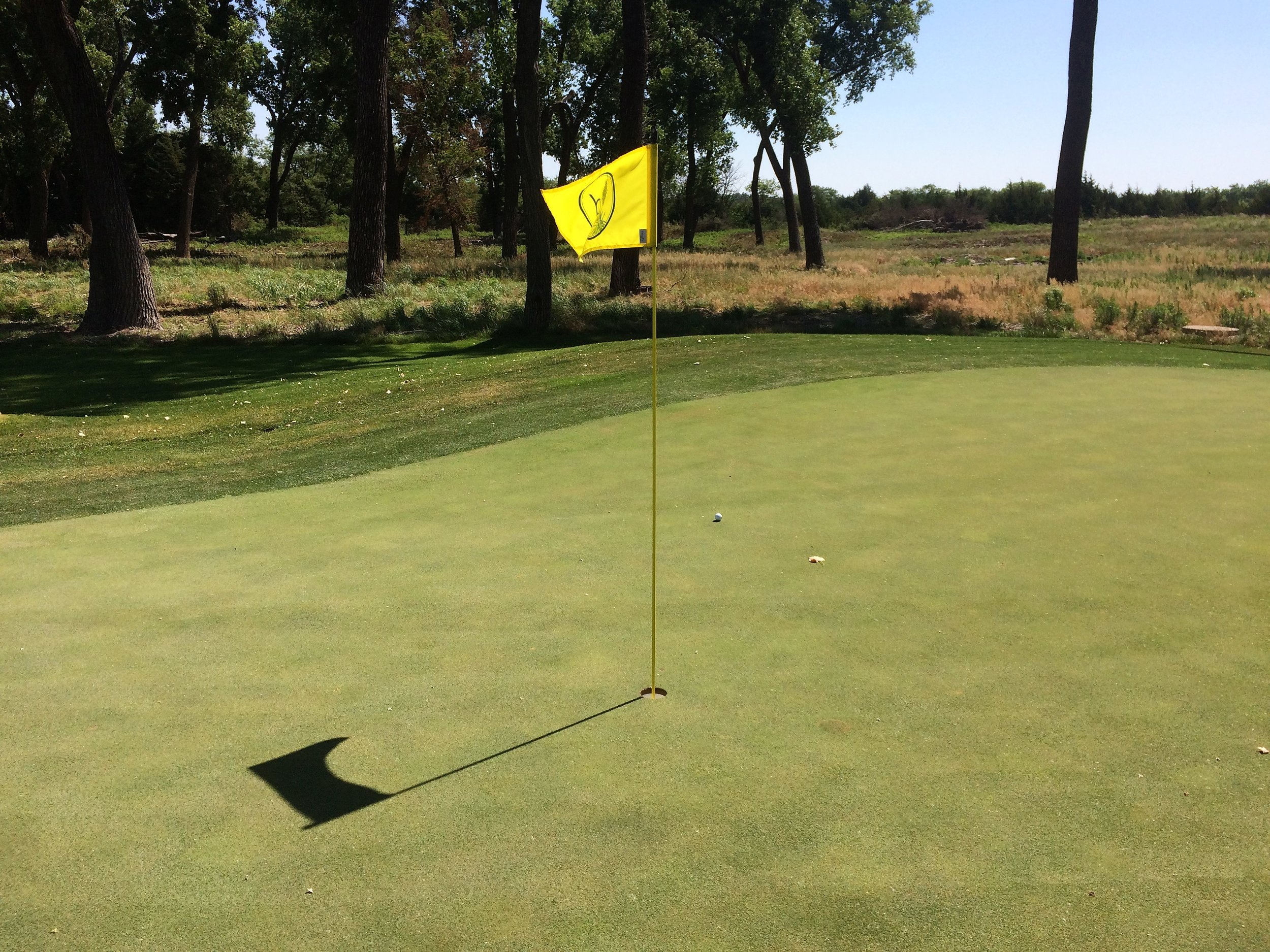 My bunker shot on the 14th hole rolled six feet past the flag.  I made the putt for an improbable par