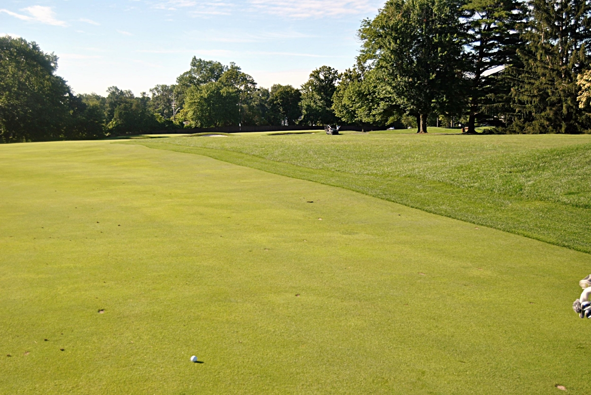 Golf is so much easier when you drive the ball in the fairway.