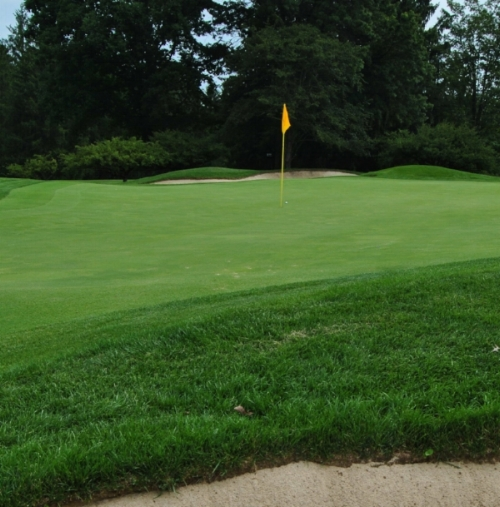 The ball is not as close as the sand shot on the fifth hole, but it is close enough.