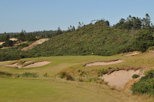 The par three 17th hole.