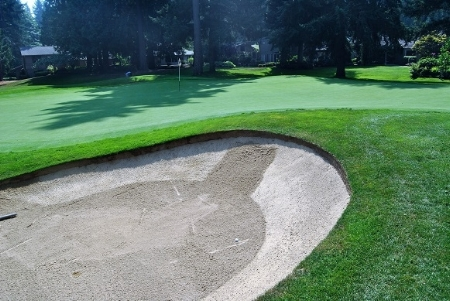 I hit a draw around the trees, but didn't turn it enough to avoid the right green side bunker.
