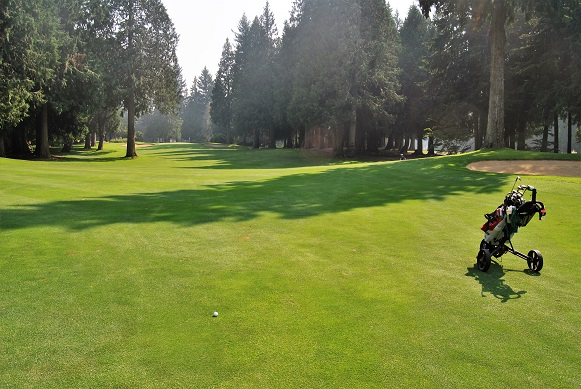 Drive was to the middle of the fairway on the 3rd hole on the North nine, but yet again there are trees affecting the approach shot.