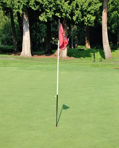 The ball behind the flag after it rolled right by the flag.