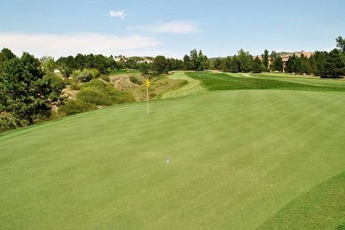 My tee shot on the fourth hole landed on the green and rolled 15 feet past the flag.