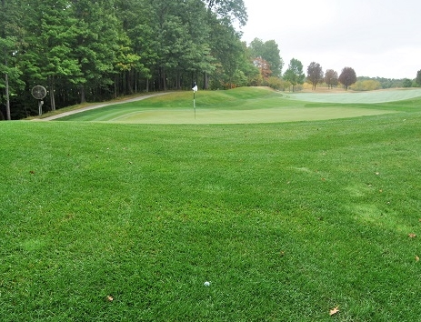 My approach shot flew directly over the flag and 10 yards long