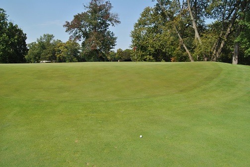 After lying two just off the front of the green, I managed to make a double bogey on the 11th hole.