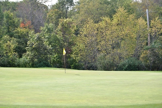 My approach shot on the fifth green.