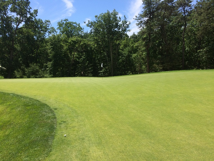 hole three green.jpg