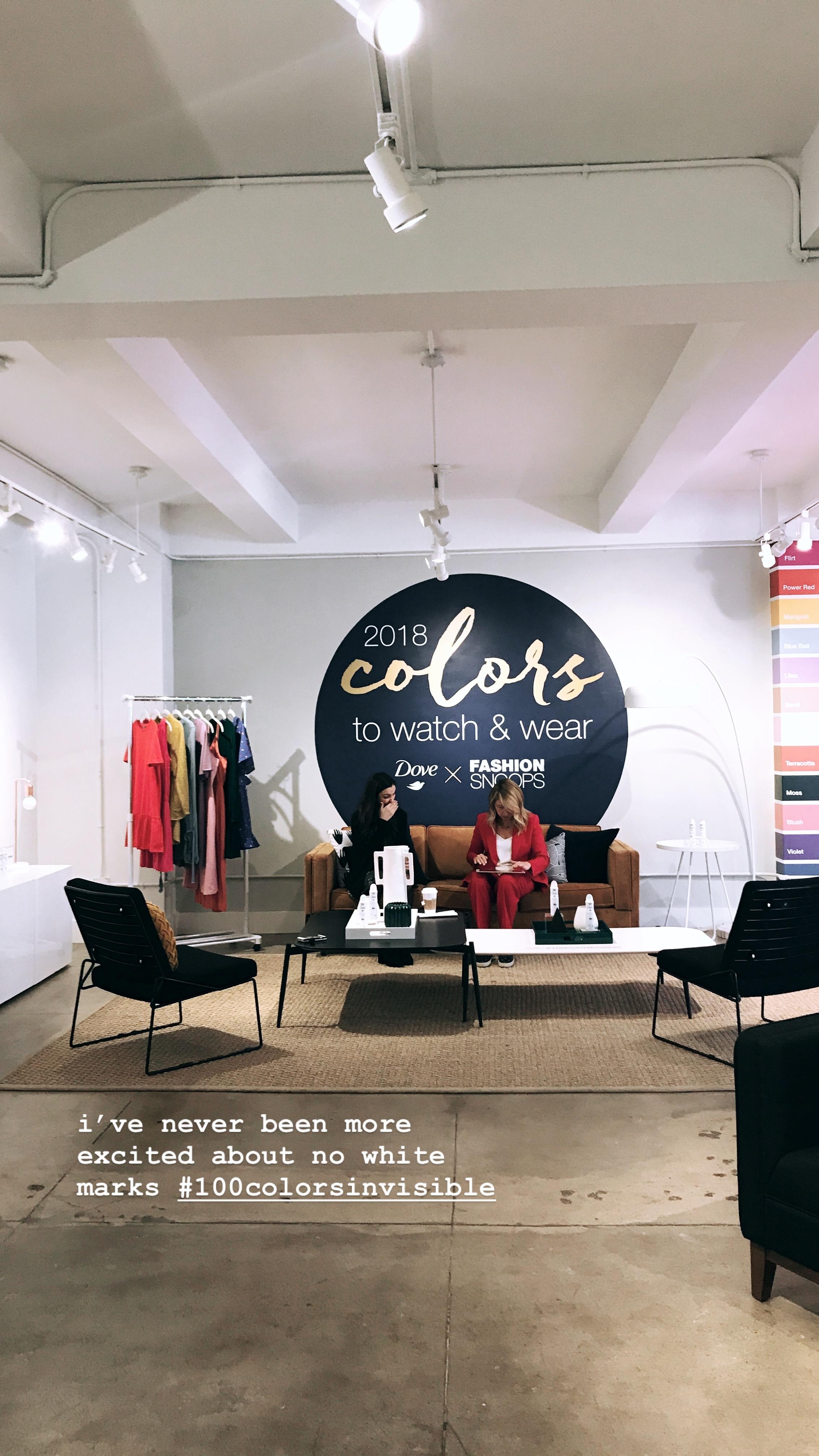 Dove X Fashion Snoops: #100ColorsInvisible