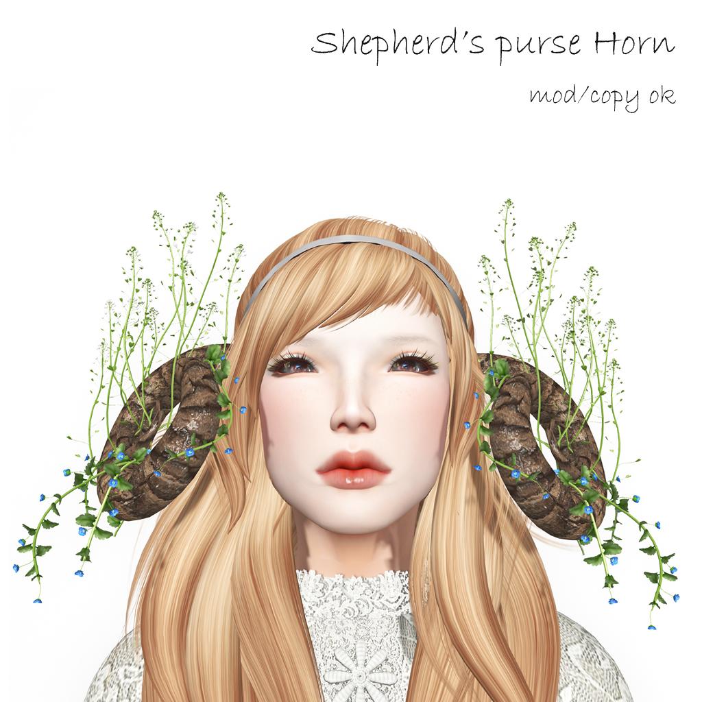 ShepherdGÇÖs purse Horn AD.jpg