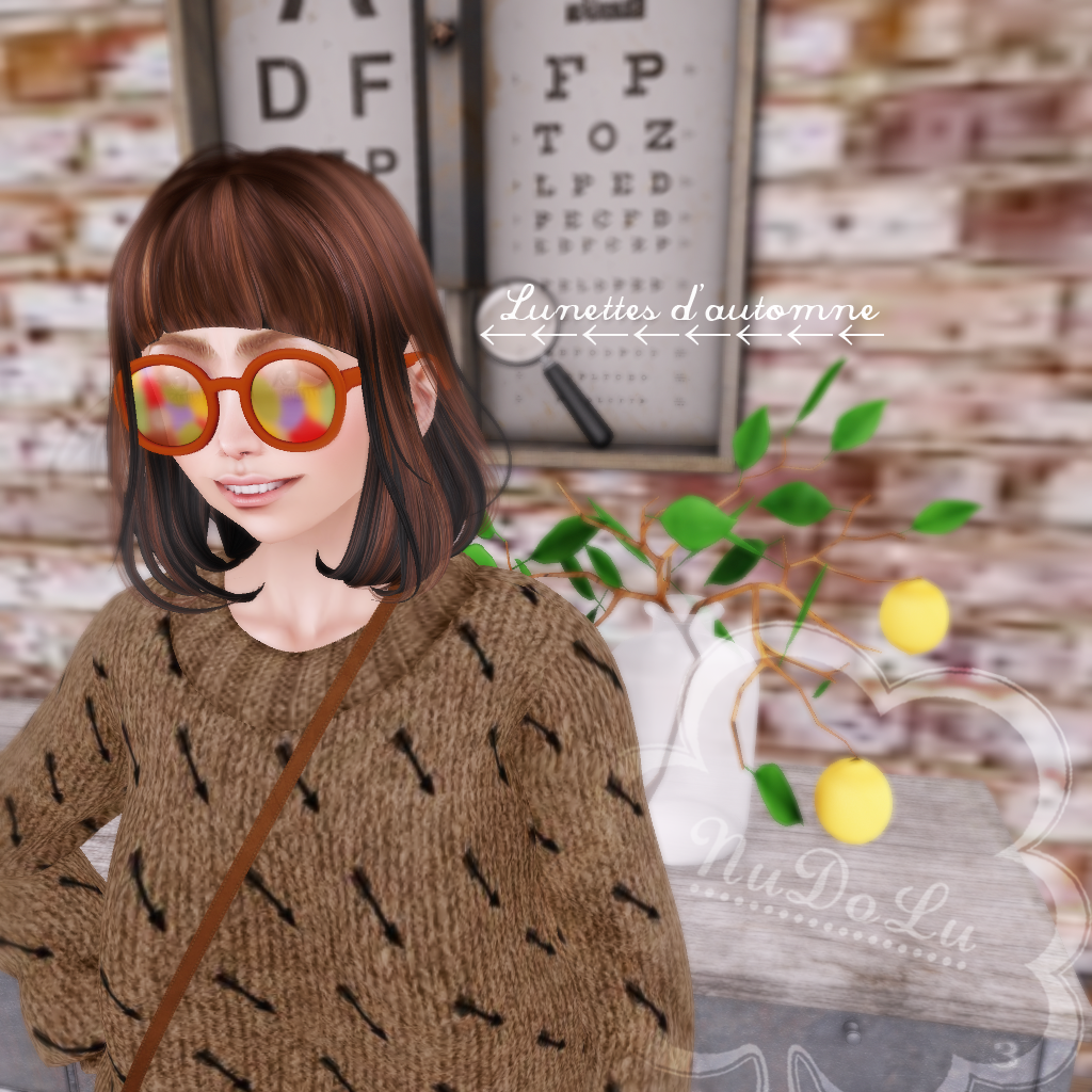 NuDoLu Lunettes d'automne TSS gift AD.png