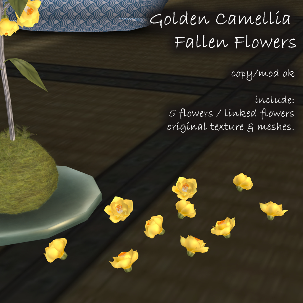 Golden Camellia fallen Flowers.jpg