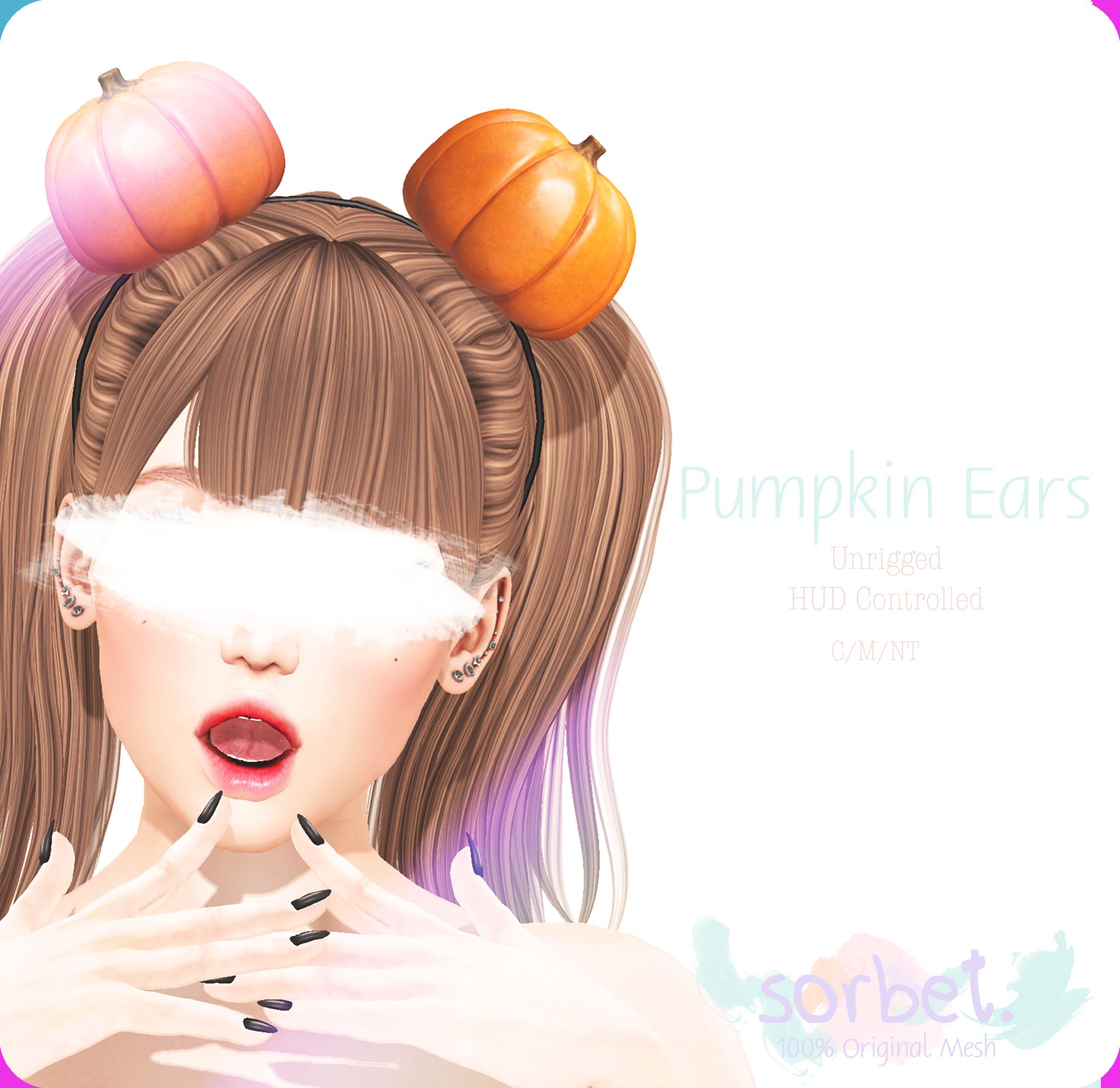 Sorbet. Pumpkin Ears AD.png