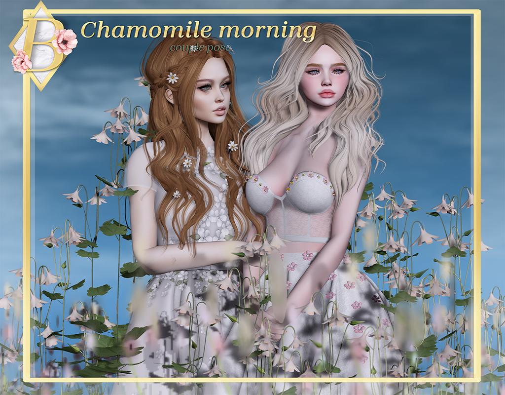 charmomilemorning.png