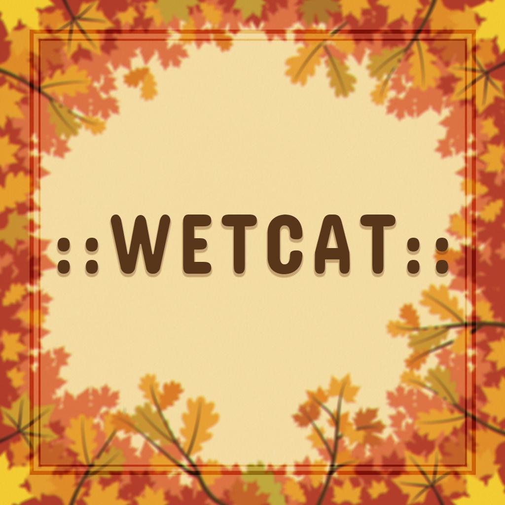 WetCat.jpg