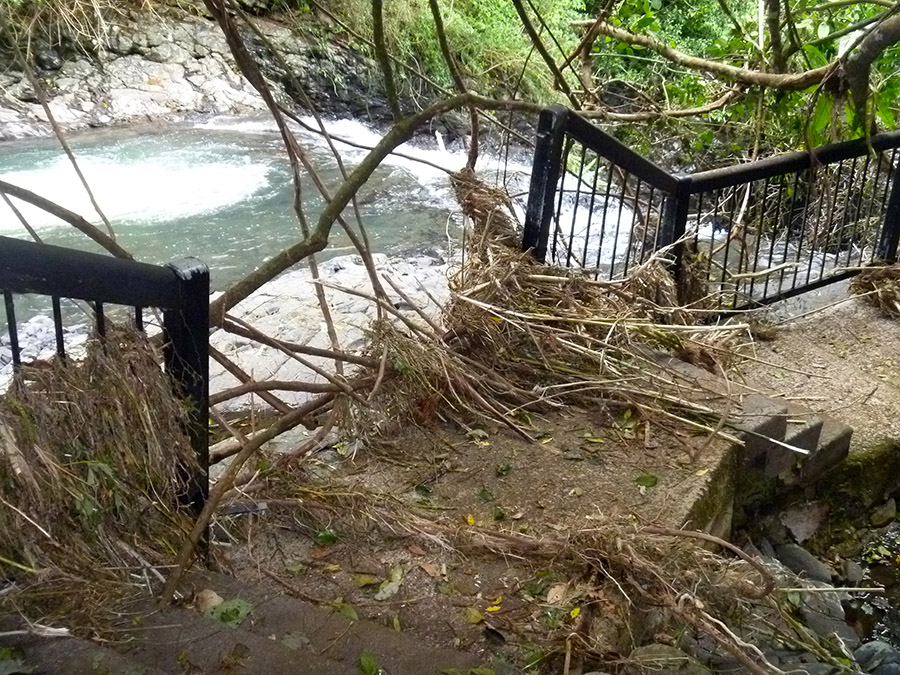 Purling-Brook-Falls-in-Springbrook-National-Park-after-Cyclone-Debbie-flooding.jpg