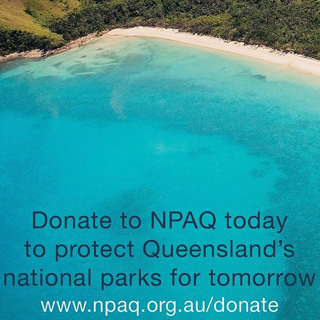 If you agree with us that national parks are too precious to lose, please consider taking action.  Short on time? The easiest way to help is to donate to NPAQ - the voice of national parks in Queensland since 1930 - so we can continue to advocate for the preservation, expansion and good management of national parks. Visit www.npaq.org.au/donate or phone 07 3367 0878.  #connectandprotect #nationalparksqld #queenslandnationalparks #lindemanislandsnationalpark #lindemanislandsNP #greatbarrierreefworldheritagearea #lindemannaturally #nationalparks #tooprecioustolose