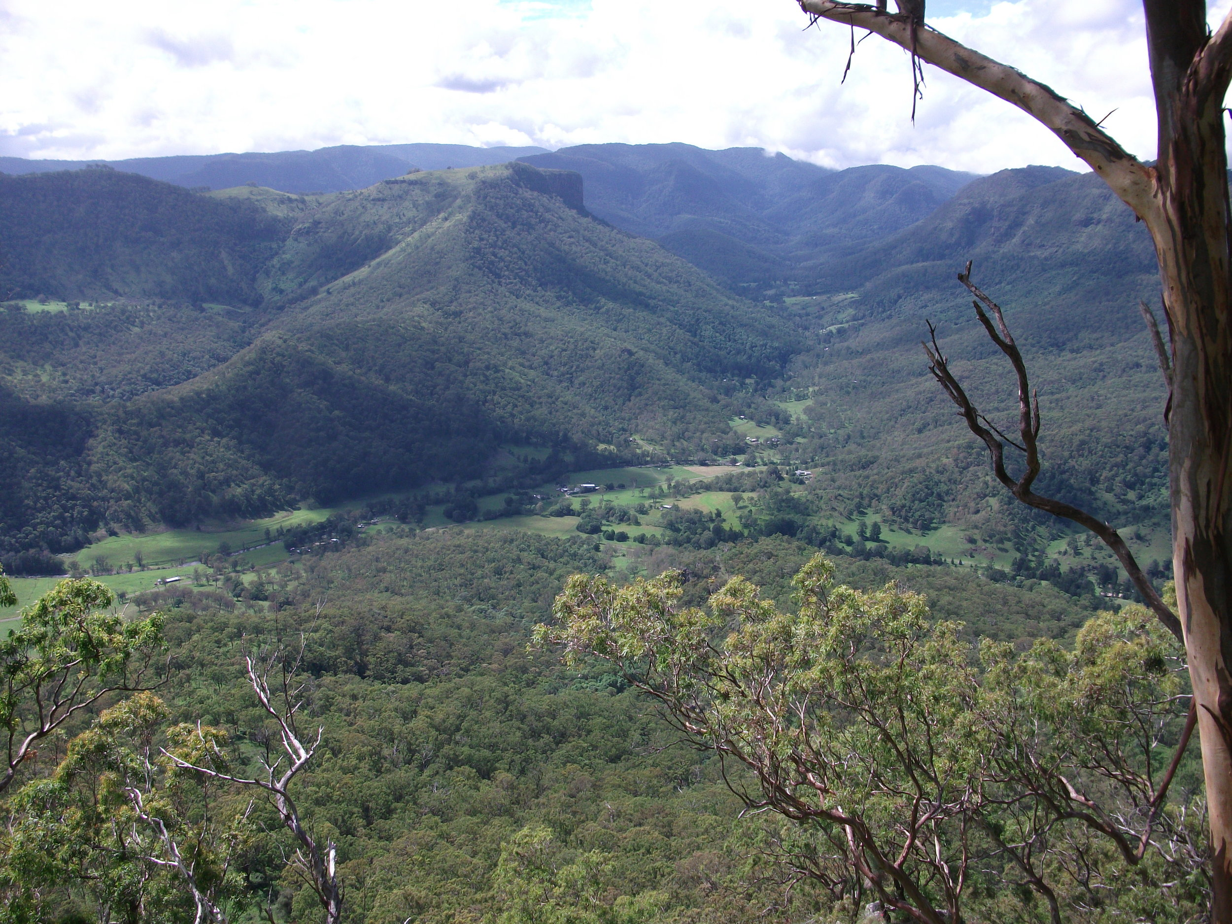Neglected Mt:where Robert Collins took Lord Lamington walking (Supplied)
