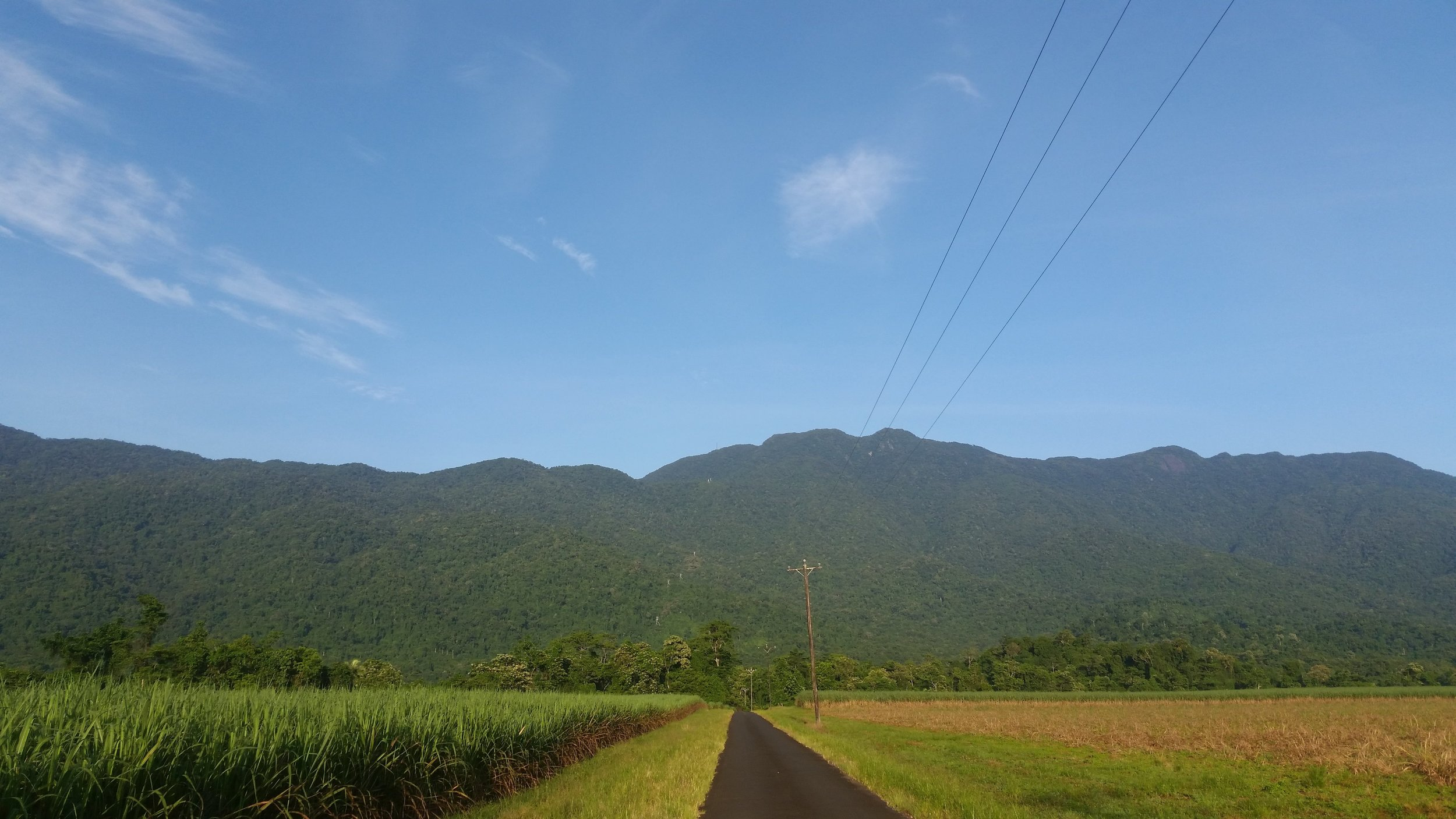 Mt Bellender Ker from Bruce Highway (Matthew Palermo, Wikimedia Commons)