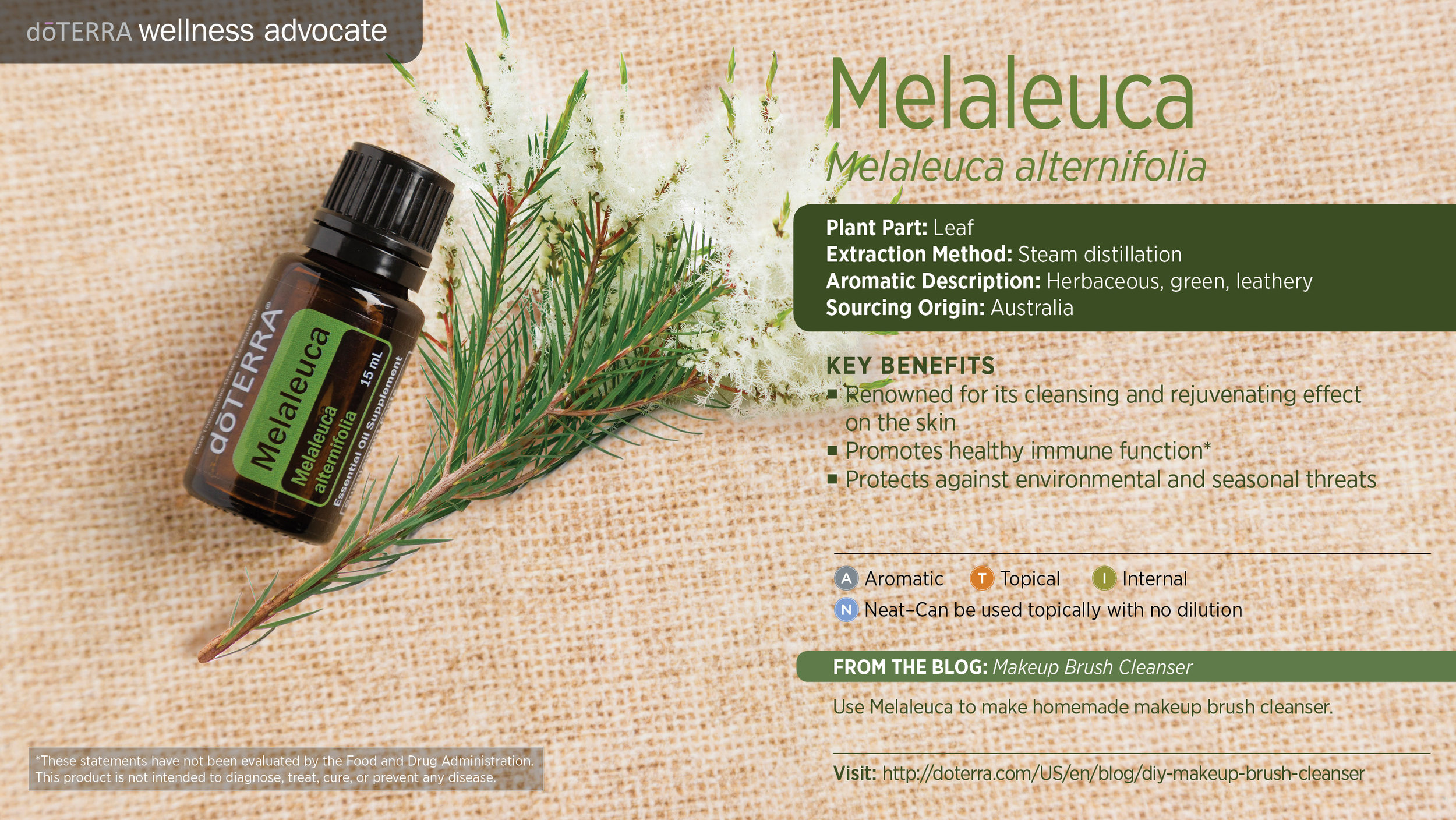 Melaleuca oil is one of the absolute must-haves for your essential oil collection!