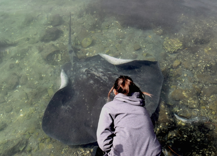 Me with Big Momma, a local girl who frequents the Woollamia boat ramp in Jervis Bay, NSW, Australia.