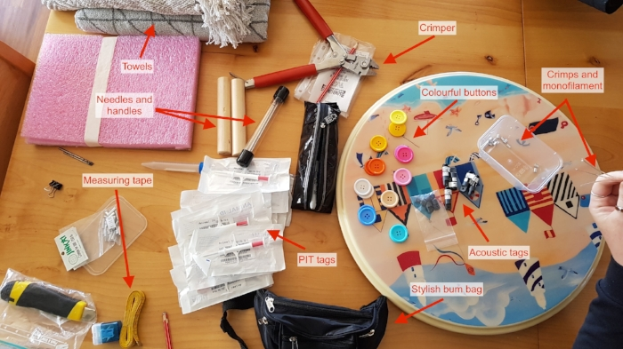 What's in a stingray tagging kit?