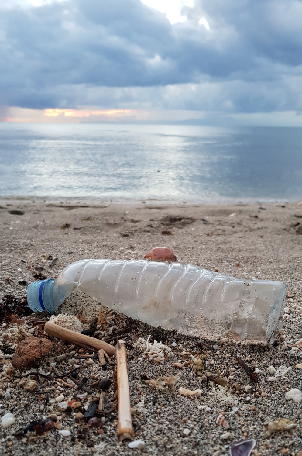 Fighting plastic pollution with plants - How one company plans to replace Indonesia's disposable plastic with plant-based and compostable alternatives.