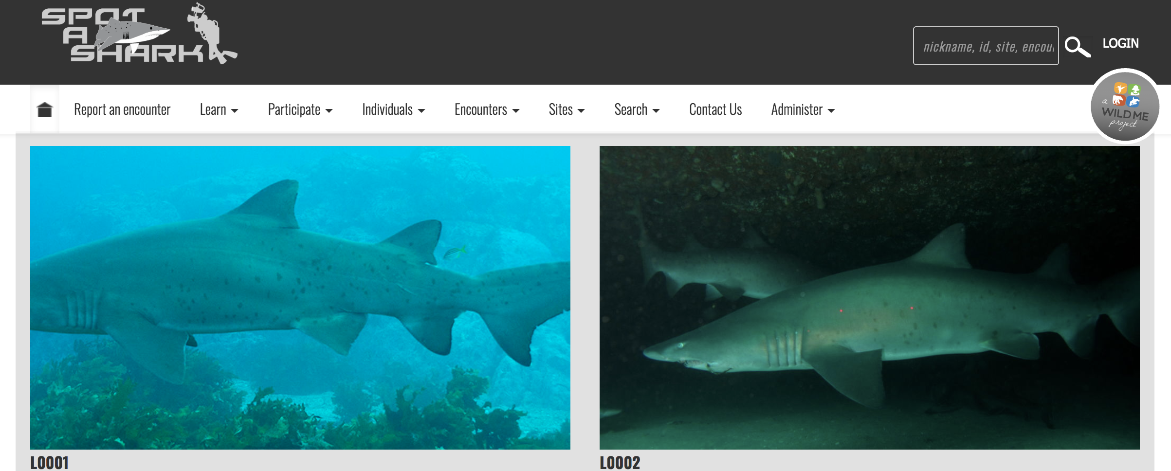 Spot A Shark  was developed to monitor the Australian grey nurse shark population and record changes at their local aggregations sites.