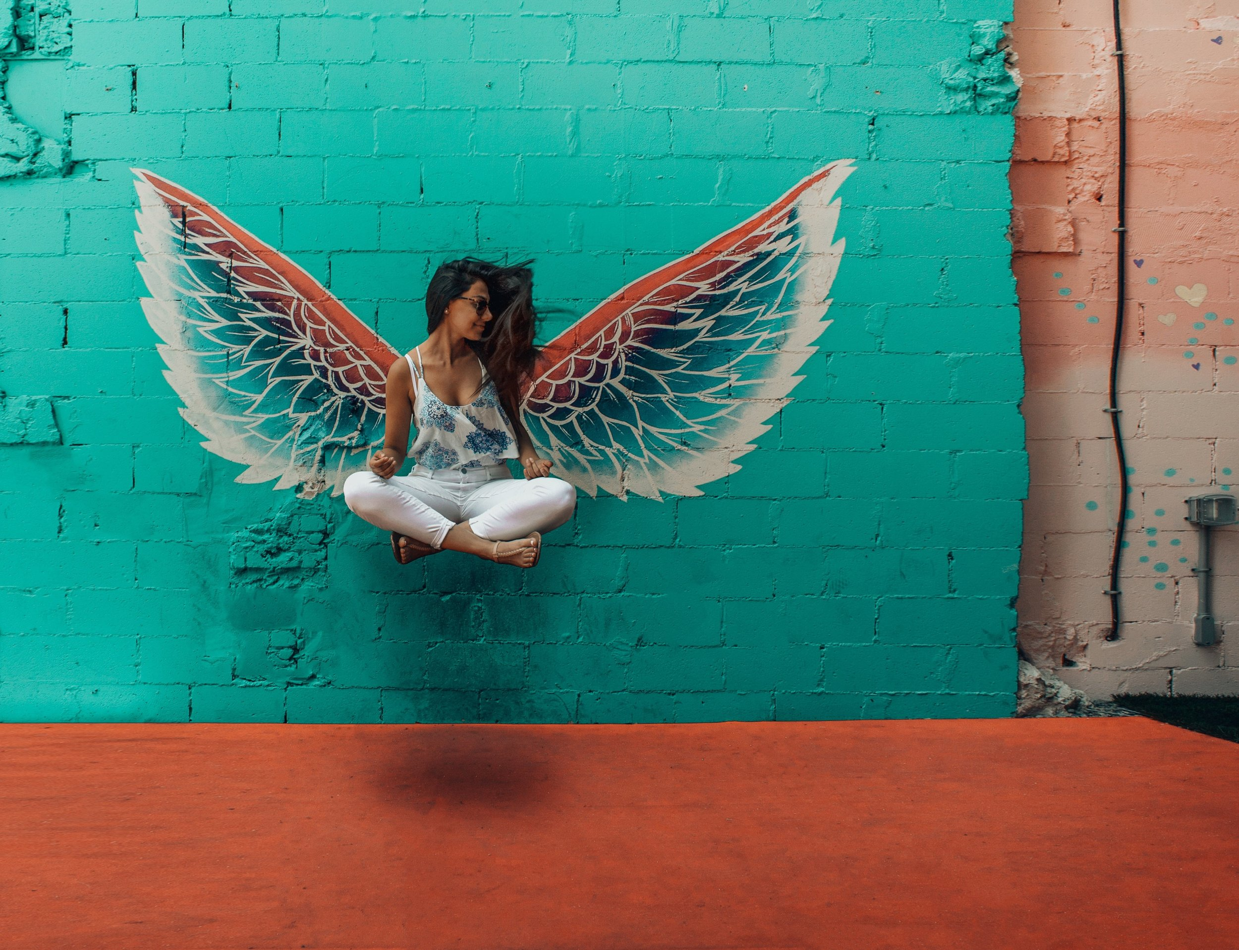Amanda Robins Psychotherapy. Spread your wings and fly with psychotherapy for complex trauma in Melbourne. Schedule your free 20 minute consultation now.