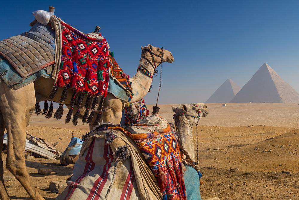 Pyramids & Luxorfrom 465 USD - 5 DaysCairo – Luxor