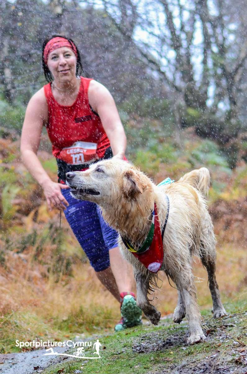 A lady and her dog running the cannicross trail challenge in the rain.