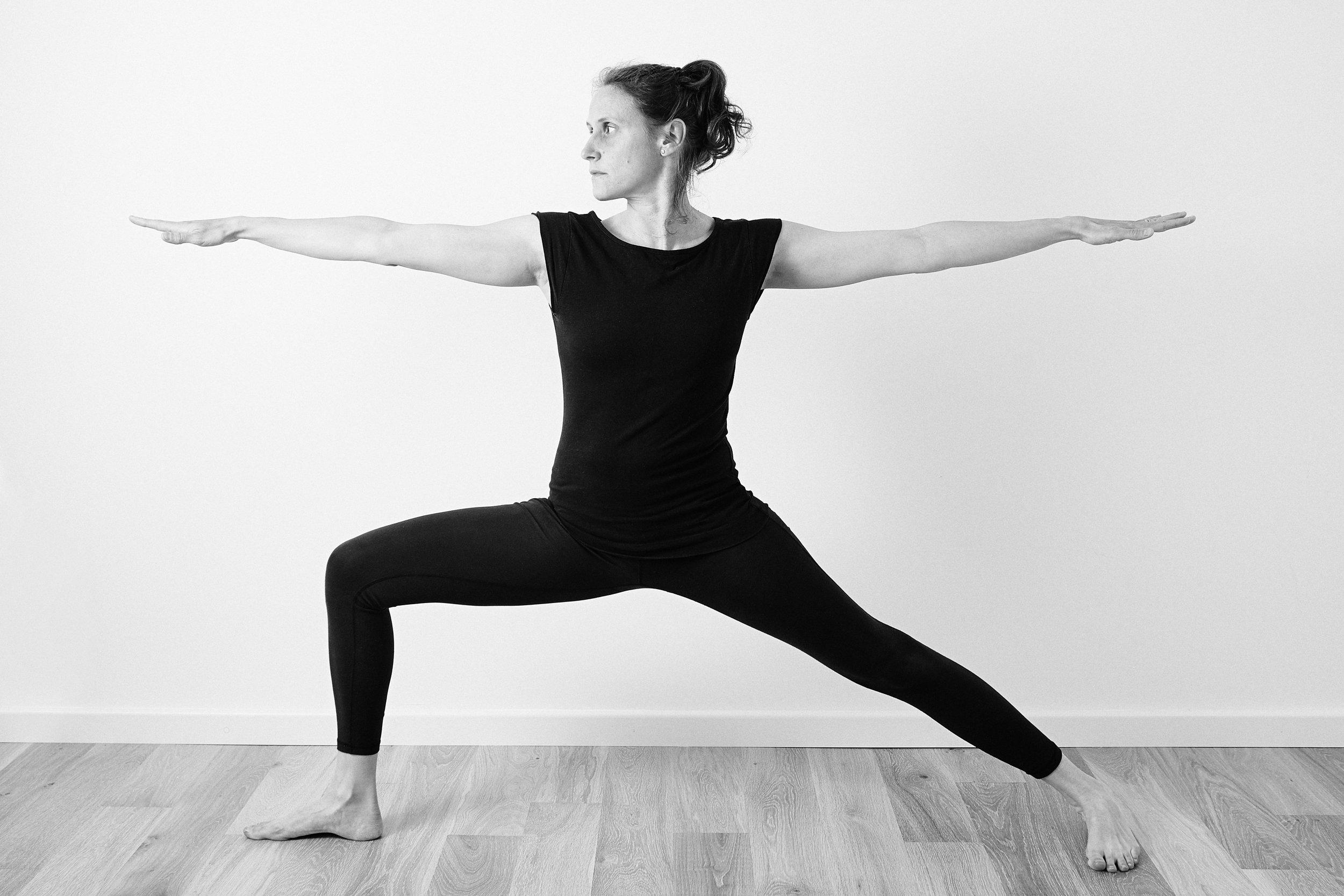 04.24.2017 - Appledown Iyengar Yoga Studio00767.jpg