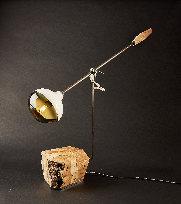 MANTIS DESK FULCRUM LAMP B-1.jpg