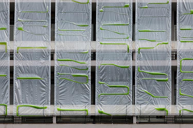 Hệ thống rèm lọc không khí từ tảo sinh học.